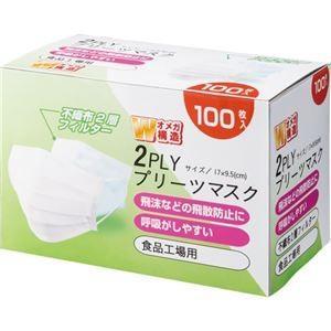 【商品名】 (まとめ) YAMAZEN 2PLYプリーツマスク YFM2-100 1箱(100枚) ...