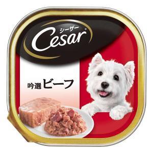 【商品名】 (まとめ)シーザー 吟選ビーフ 100g【×96セット】【ペット用品・犬用フード】