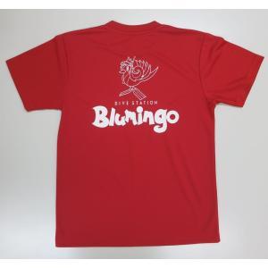 今までは綿のTシャツだけでしたが、今回は新たに流行りの速乾性のドライTシャツをラインナップに入れてみ...