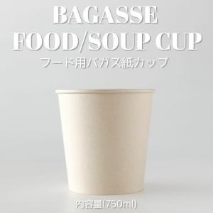 テイクアウト 容器 takeout お持ち帰り おしゃれ エコ 紙コップ バガス サトウキビ 750ml フード スープ カップ バガス容器 500個入|bmt-store