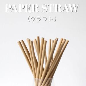 紙ストロー ペーパーストロー クラフト 10000本|bmt-store