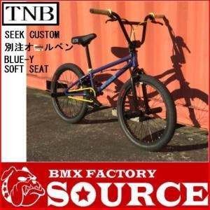 限定 別注オールペイントカスタム BMX FLATLAND 20インチ  TNB  SEEK 8インチバー|bmx-source