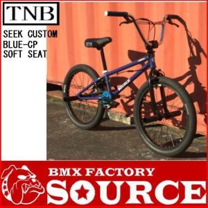 限定 別注オールペイントBMXカスタム BMX FLATLAND 20インチ  TNB SEEK BARCP|bmx-source