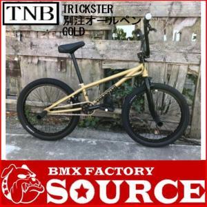 自転車 BMX FLATLAND 20インチ  TNB TRICK STER GOLD  限定オールペイント|bmx-source