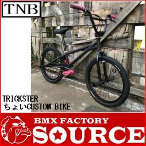 自転車 BMX FLATLAND 20インチ  TNB  TRICKSTER  MATT BLACK PINK|bmx-source