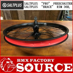 BMX 20インチ リアホイール SALTPLUS PRO FREECOASTER HUB WHEEL|bmx-source