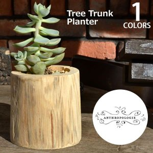 アンソロポロジー Anthropologie 植木鉢 鉢カバー tree Trunk Planter|bobsstore
