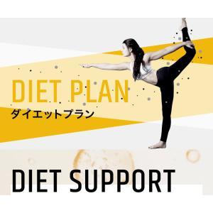 ダイエットサポート 〜サブスクプラン〜|bodybox-store