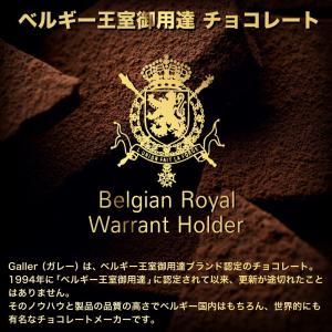 正規取扱店 ベルギー王室御用達 高級チョコレート ジャン・ガレー 】ミニバー 6本セット|bodycreate|05
