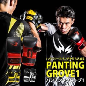 パンチンググローブ1 BODYMAKER ボディメーカー ボクシング 格闘技 グローブ 空手 キックボクシング トレーニング