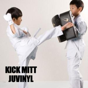 キックミットジュビニール BODYMAKER ボディメーカー ミット 空手 ボクシング キックボクシング 総合格闘技 ラッシュ 練習 打撃 コンビネーション キッ|bodymaker