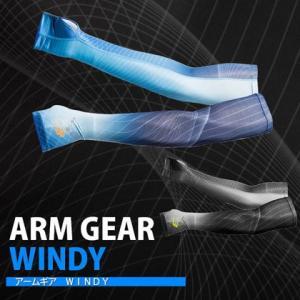 アームギア WINDY / BODYMAKER ボディメーカー スポーツ アウトドア ウォーキング マラソン ジョギング カラフル|bodymaker