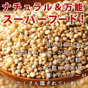 キヌア スーパーフード 無添加 1kg(500g×2)  送料無料 雑穀|bokunotamatebakoya|02