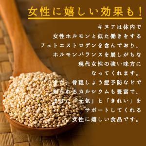 キヌア スーパーフード 無添加 1kg(500g×2)  送料無料 雑穀|bokunotamatebakoya|03