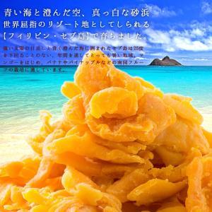 ドライマンゴー マンゴー 送料無料 1kg(500g×2) 種周り 切り落とし 不揃い 半生 ドライフルーツ 肉厚 セブ島 フィリピン 訳あり|bokunotamatebakoya|02