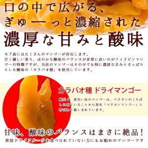ドライマンゴー マンゴー 送料無料 1kg(500g×2) 種周り 切り落とし 不揃い 半生 ドライフルーツ 肉厚 セブ島 フィリピン 訳あり|bokunotamatebakoya|03