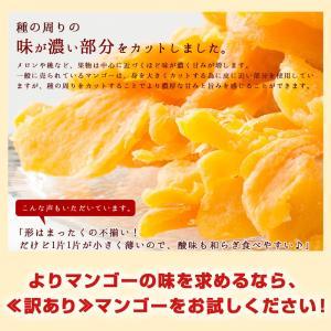 ドライマンゴー マンゴー 送料無料 1kg(500g×2) 種周り 切り落とし 不揃い 半生 ドライフルーツ 肉厚 セブ島 フィリピン 訳あり|bokunotamatebakoya|06