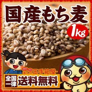 もち麦 送料無料 国産もち麦 1kg(500gx2)雑穀 お試し 業務用 食物繊維  [ もち麦 国内産もち麦 ] TVで話題|bokunotamatebakoya