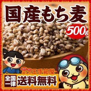 ポイント消化 送料無料 国産もち麦 500g グ...の商品画像