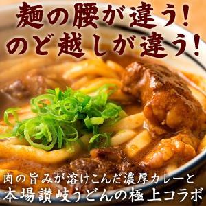 カレーうどん 焼き豚有名店のカレーうどん お試し1食 (麺大盛り2人前) 送料無料 (セット パック)|bokunotamatebakoya|04