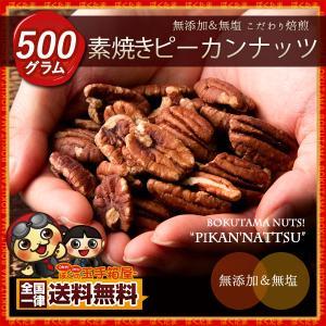 ナッツ ピーカンナッツ 500g 無添加 素焼き ぺカンナッツ 送料無料 ポイント消化|bokunotamatebakoya