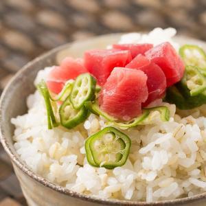 もち麦 500g 送料無料 驚きの食物繊維(β-グルカン) スーパーフード TVで話題|bokunotamatebakoya|02