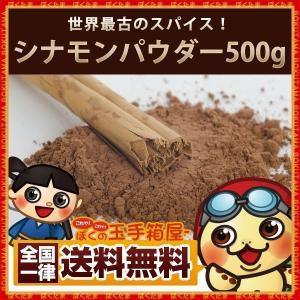 シナモンパウダー  粉末  500g 送料無料 シナモン パウダー スパイス 桂皮 肉桂 スパイス 調味料|bokunotamatebakoya