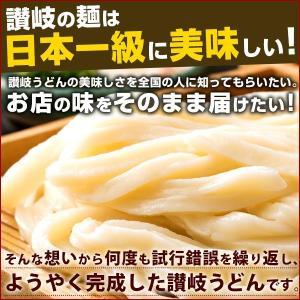 讃岐うどん 麺が本気で旨い ご当地うどん お試...の詳細画像2