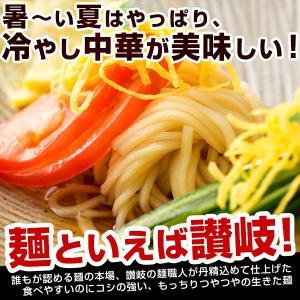 ギフト 冷やし中華 麺が本気で旨い冷やし中華1 0人前 ギフトセット(麺100gx10、スープ5種類x2) お取り寄せ 送料無料 ご当地 (セット パック)|bokunotamatebakoya|02