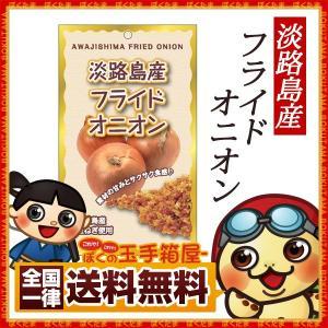 フライドオニオン 淡路島フライドオニオン 100g たまねぎ 玉ねぎ タマネギフライ 玉葱 送料無料|bokunotamatebakoya