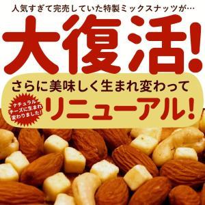 ナッツ ミックスナッツ チーズ Chu-Chu-ナッツ 250g チーズ入り チューチュー ミックスナッツ [アーモンド カシューナッツ チーズ お手軽 サイズ ] bokunotamatebakoya 02