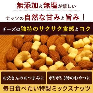 ナッツ ミックスナッツ チーズ Chu-Chu-ナッツ 250g チーズ入り チューチュー ミックスナッツ [アーモンド カシューナッツ チーズ お手軽 サイズ ] bokunotamatebakoya 05