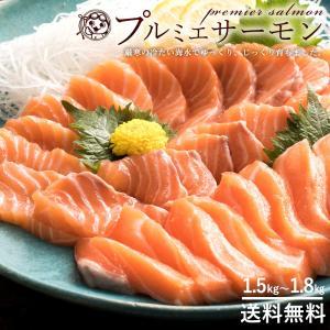 プルミエサーモン ノルウェー産 アトランティックサーモン 半身 片身 約1.5kg~1.8kg 冷蔵 約6~10人分 [送料無料 サーモン 刺身 半身 魚 ]|bokunotamatebakoya