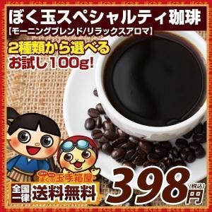 珈琲 コーヒー豆 2種類のスペシャリティ珈琲 お試し100g...