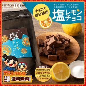半額 オートミール チョコレート 塩レモンチョコ 100g [ 送料無料 溶けない チョコレート レ...
