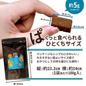 半額 チョコレート 塩レモンチョコ 100g [ 送料無料 溶けない チョコレート レモン 塩 塩分補給 耐熱 チョコ 塩飴 熱中症 爽やか 間食 ] チョコ スイーツ グルメ bokunotamatebakoya 12