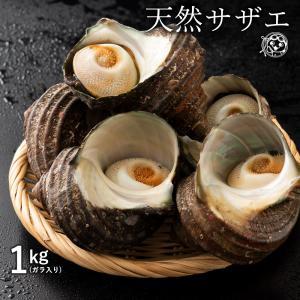 鮮魚 直送 サザエ さざえ (殻入り) 1kg (4〜5個) 天然サザエ 香川県産 冷蔵  [送料無料  海鮮 貝 バーベキュー BBQ 壺焼き 貝類 ] グルメ|bokunotamatebakoya