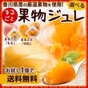 ポイント消化 送料無料 2種類から選べる お試し1個 果物ジ...
