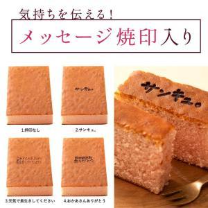 ギフト カステラ ルビーチョコレート  ルビーチョコを使用したチョコレートカステラ ルビーカステラ 送料無料 チョコ チョコレート|bokunotamatebakoya|05