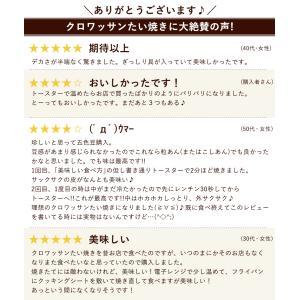 ポイント消化 (送料無料 500円)  クロワッサン たい焼き 送料無料 11種から選べる お試し 1匹 お取り寄せ 和菓子 スイーツ ギフト  セール SALE|bokunotamatebakoya|20