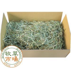 牧草市場 北海道産 チモシー 2番刈り 牧草 20kg