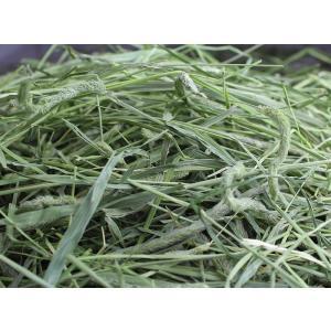 【30年度産新刈り】牧草市場 スーパープレミア...の詳細画像2