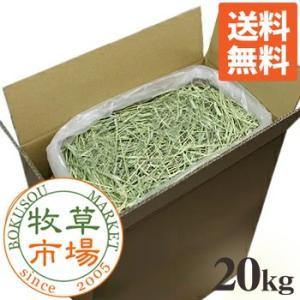牧草市場 USチモシー 1番刈り 牧草 ダブルプレス 20kg