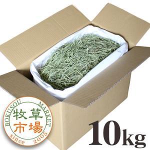牧草市場 USチモシー 2番刈り 牧草 ソフトタイプ 10kg 袋入