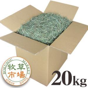 【28年度産新刈り】牧草市場 USチモシー 3番刈り 牧草 スーパーソフト 20kg