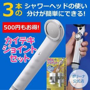 セットで500円もお得 アリアミストボリーナ+カイテキジョイントセット|bollina