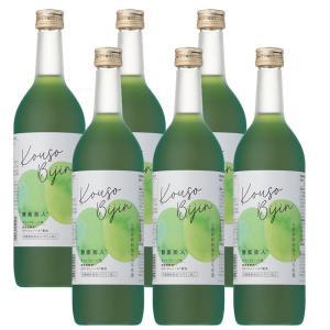 (6本セット)シーボン 酵素美人緑(PJ)(5倍濃縮・キウイフルーツ味)720ml (送料無料)|bombyx
