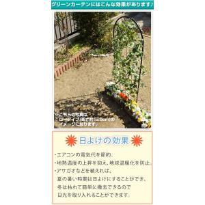 グリーンカーテン グリーンフェンス UVカット 目隠し エクステリア 送料無料|bon-like|03