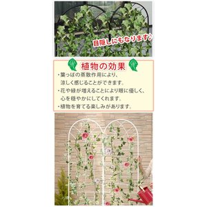 グリーンカーテン グリーンフェンス UVカット 目隠し エクステリア 送料無料|bon-like|04