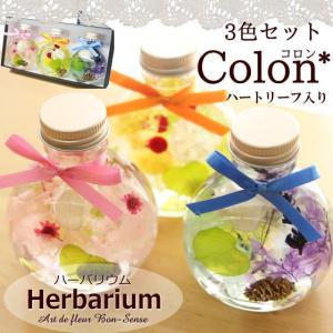 ハーバリウム Herbarium ≪コロン3色セット≫ ハートリーフ入り 植物標本 ギフト プリザーブドフラワー ドライフラワー|bon-sense